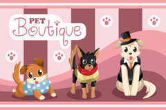 Boutique dell'animale domestico Fotografia Stock