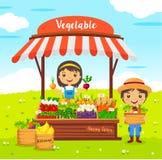 Boutique locale de légumes d'agriculteur du marché Photographie stock libre de droits