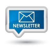 Bouton bleu principal de bannière de bulletin d'information Image libre de droits