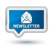 Bouton bleu principal de bannière de bulletin d'information Images stock