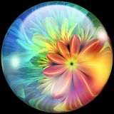 Bouton brillant avec l'embellissement coloré et léger illustration de vecteur