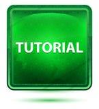 Bouton carré vert clair au néon d'instruction illustration de vecteur
