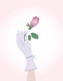 Bouton de rose de fixation de main de Woman Photo libre de droits