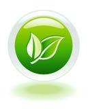 Bouton de Web d'Internet d'écologie Photographie stock libre de droits