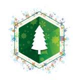 Bouton floral d'hexagone de vert de modèle d'usines de conifère d'icône à feuilles persistantes de pin illustration stock