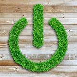 Bouton marche d'herbe sur la texture en bois Photographie stock libre de droits