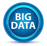 Bouton rond bleu de globe oculaire de Big Data illustration libre de droits