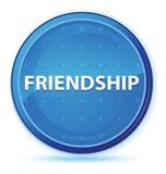 Bouton rond principal bleu de minuit d'amitié illustration libre de droits