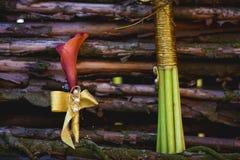 Boutonniere лилий calla на деревянной предпосылке загородки Стоковое фото RF
