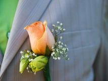 Boutonniere. Beige rose wedding boutonniere on suit of groom royalty free stock photography