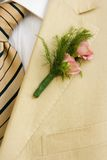 Boutonniere. Suit and roses. Summer wedding. Shallow depth of field royalty free stock photos