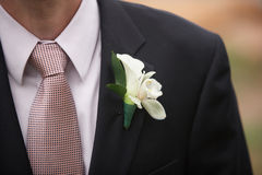 Boutonniere Stock Photos