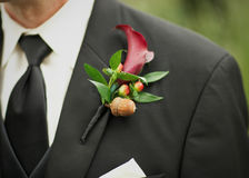 Boutonniere Stock Image