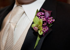 Boutonniere. Wedding day boutonniere of purple and green royalty free stock photo