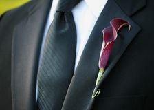 Boutonniere. Purple calla lily wedding boutonniere on sit of groom royalty free stock images