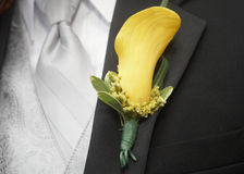 Boutonniere. Yellow calla lily wedding boutonniere on suit of groom royalty free stock image