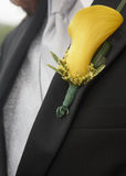 Boutonniere Royalty Free Stock Image