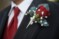 Boutonniere stock photography