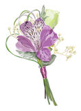 Boutonniere with Alstroemeria and Eustoma. Royalty Free Stock Image