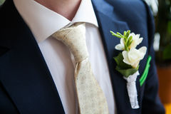 Boutonniere auf dem Revers des Bräutigams Stockbild