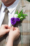 Boutonniere. Bride adjusting grooms boutonniere closeup royalty free stock photo