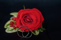 Boutonniere d'écarlate avec épouser d'anneaux Photos stock