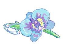 Boutonniere de la boda con las orquídeas azules Fotografía de archivo