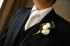 boutonniere dzień fornal target615_0_ target616_1_ Obrazy Royalty Free