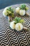 Boutonniere för brudgum och groomsman royaltyfria bilder