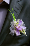 Boutonniere flower in the pocket of the groom on wedding ceremony Stock Images