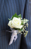 boutonniere fornal Obrazy Stock