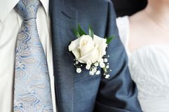 Boutonniere groom Stock Photography