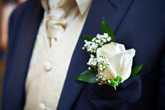 Boutonniere for the groom dress Royalty Free Stock Photos