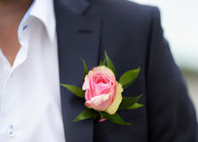 Boutonniere groom Royalty Free Stock Photography