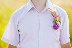 Boutonniere groom Stock Image