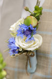Boutonniere. The boutonniere on the groom's jacket stock photo