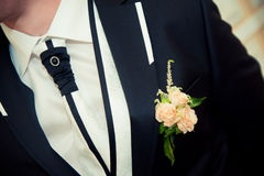 Boutonniere for the groom's suit Royalty Free Stock Images