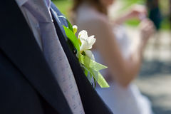 Boutonniere for the groom suit. Elegant in a boutonniere for the groom a suit - a symbol of the wedding Royalty Free Stock Photo