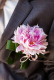 Boutonniere on the lapel of the groom Stock Images