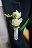 Boutonniere on the lapel of the groom Royalty Free Stock Images
