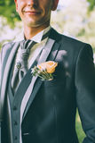 Boutonniere with an orange rose on a groom's suit. With a plastron Stock Photography