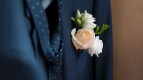 Boutonniere in the pocket of the jacket of the groom in his wedding day. Clip. Rose in his jacket pocket stock video