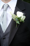 Boutonniere on Suit Stock Images