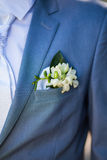 Boutonniere on the suit Royalty Free Stock Photo