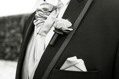 Boutonniere in tuxedo Stock Image