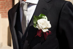 Boutonniere in tuxedo Stock Image
