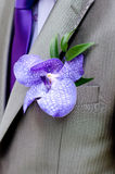Boutonniere, wedding male accesory Royalty Free Stock Photography
