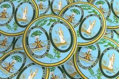 Boutons d'état d'USA : Pile d'illustration du sud de Carolina Seal Badges 3d illustration de vecteur