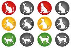 Boutons de chat et de chien Photographie stock libre de droits