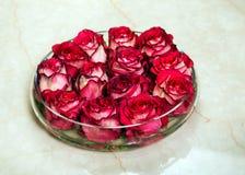 Boutons de rose rouges dans le vase en verre Image stock
